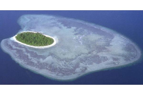 Sipadan: l'isola delle tartarughe